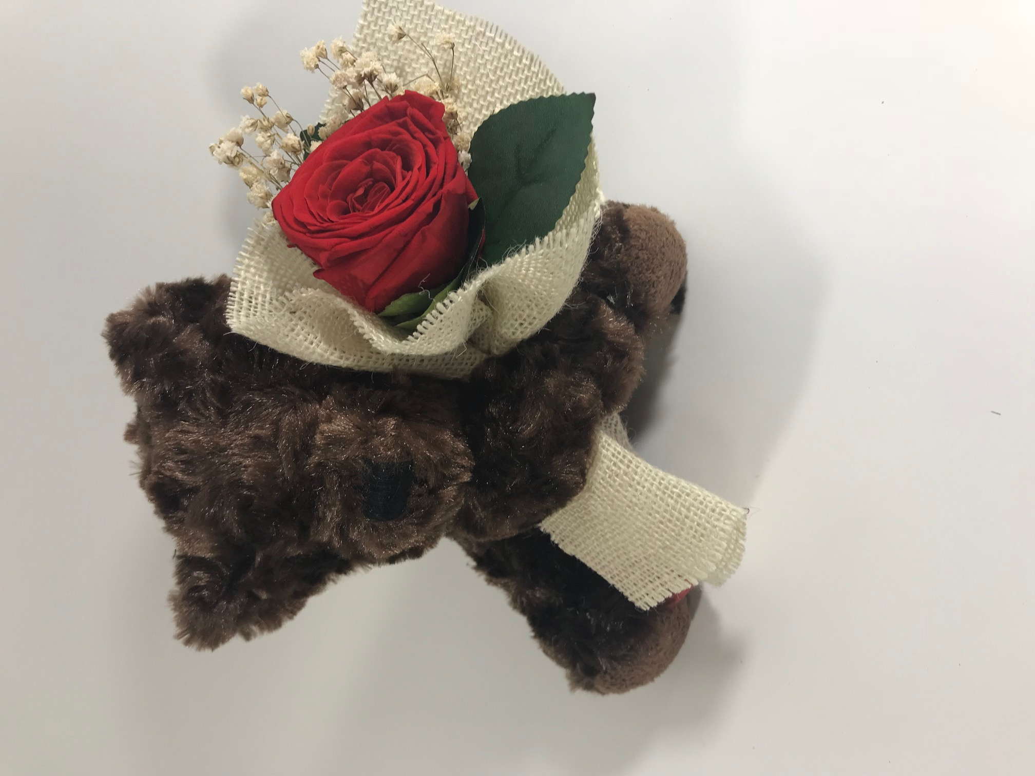 Darkbrown Bear (18cm) with Last4ever Real Rose