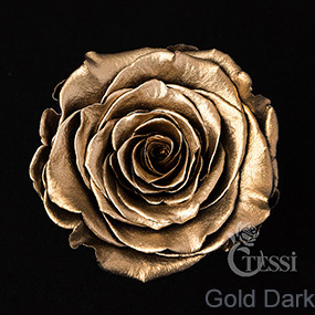 Last4ever Real Roses 6 in Box(retail) colour DARK GOLD